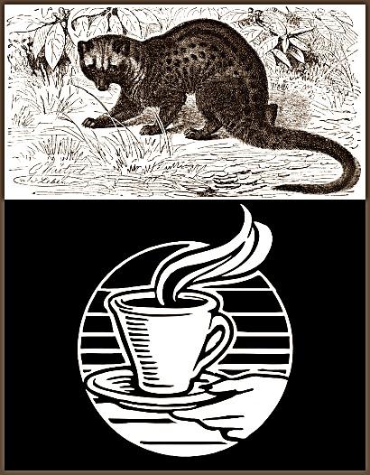 Photo of Hukum Mengkonsumsi Kopi Luwak dan Binatang Luwak